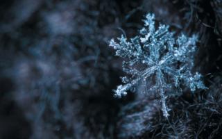 método snowflake