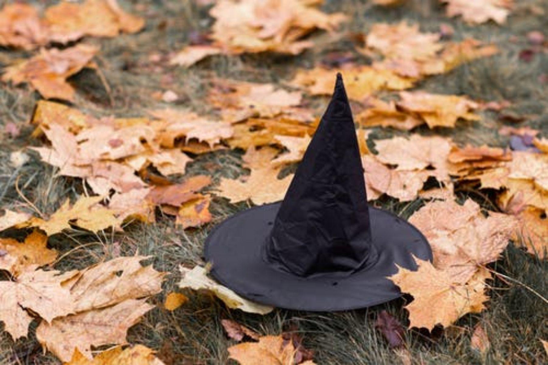 Como a bruxaria moderna surgiu